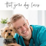 Blond male Veterinarian smiling with Yorkshire terrier